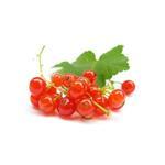 Ribes rossi interi 2.5 kg CHF 7.40/kg